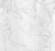 Schiele_face