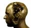 goldhead1