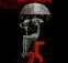 Raindance25