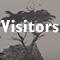 visitorsicon